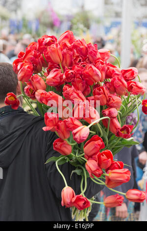London, UK. 24 May 2014. Plant sell-off on the last day of the RHS Chelsea Flower Show where many visitors pick - Stock Photo