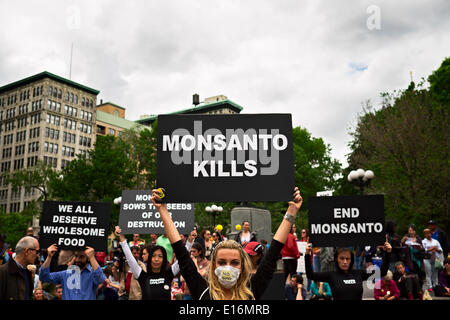 New York, NY, US, May 24, 2014:  Woman in bee costume holding sign reading 'Monsanto Kills' at March Against Monsanto - Stock Photo