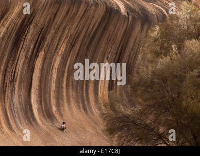 Wave Rock near Hyden in Western Australia - Stock Photo