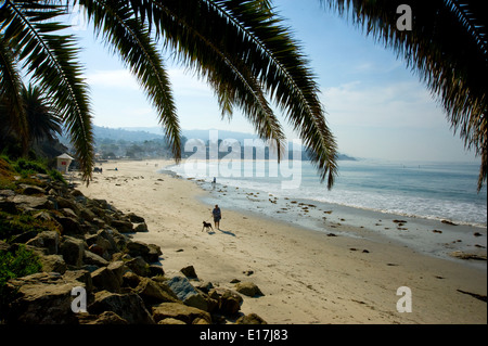 Man walking dog on Laguna Beach in Orange County, California - Stock Photo