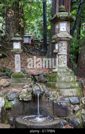 Kasuga Taisha is Nara's most famous shrine established at the same time as the city and is dedicated to the deity - Stock Photo