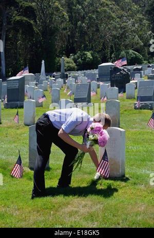 San Francisco May 26th, 2014.Man places flowers on graves of war veterans at Presidio of San Francisco national - Stock Photo