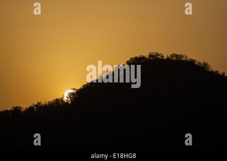 Sunrise in Bandhavgarh National Park, India, Asia - Stock Photo
