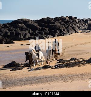 Horseback riding at Longufjorur beach, Iceland - Stock Photo