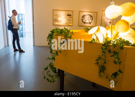 Paris, France, French Modern Art Gallery, in the Marais Area, 'Galerie Perrotin', Exhibition, Credit Chinese Artist: - Stock Photo