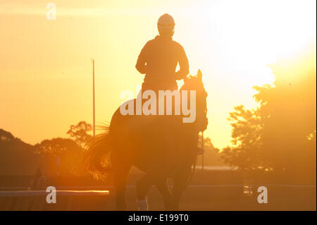 Elmont, New York, USA. 27th May, 2014. Sunrise with horses on the the main track at Belmont Park, Tuesday, May 27, 2014. Credit:  Bryan Smith/ZUMAPRESS.com/Alamy Live News