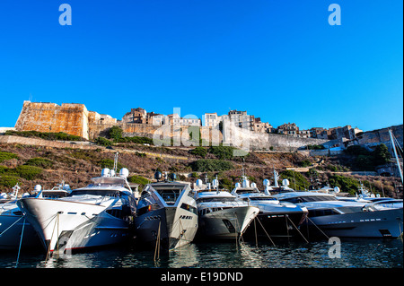 Europe, France, Corse-du-Sud (2A), Bonifacio. Cruise ships in a Marina front of the ramparts. - Stock Photo