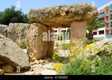 Megalithic Temple remains in garden, Dolmen Resort Hotel, Saint Paul's Bay (San Pawl il-Baħar), Northern District, - Stock Photo