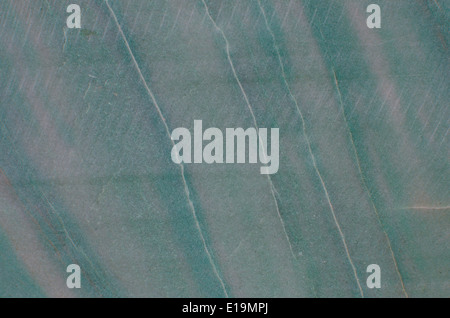 detail of stone background texture (cross-section) - Stock Photo