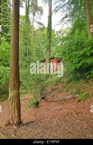 Lodge in the New Forest Godshill Hampshire UK England - Stock Photo