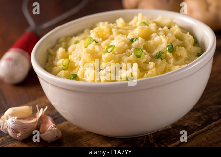 A bowl of delicious creamy garlic mashed potatoes with butter and green onions. - Stock Photo