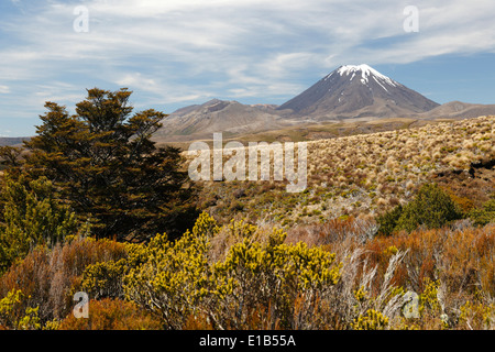 Mount Ngauruhoe, an active stratovolcano - Stock Photo
