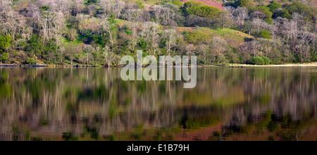 Reflections of Llyn Gwynant a lake in the valley of Nantgwynant at the heart of Snowdonia National Park Gwynedd North Wales UK,