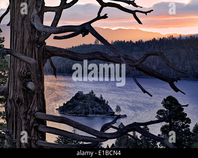 Sunrise over Emerald Bay with dead tree and Fannette Island, Lake Tahoe, California. - Stock Photo