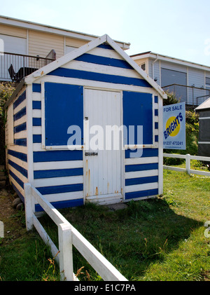 Beach hut for sale with a guide price of £10,000, Westward Ho!, Devon, UK - Stock Photo