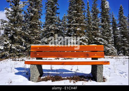 A winter image of a wooden bench on a sunny hillside - Stock Photo