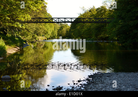 On the river Kent near Kendal, Cumbria with the suspension bridge in the background and reflection in water. - Stock Photo