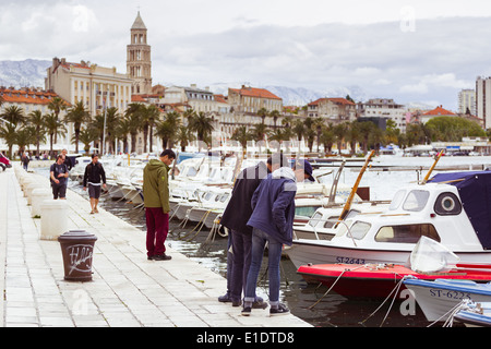fishing boats lie moored at matejuska in split croatia. in the background is seen the riva promenade and st domnius cathedral