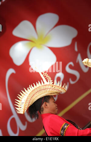 London, UK. 31 May 2014. A music artist plays a traditional string instrument on stage. Credit: David Mbiyu/ Alamy - Stock Photo