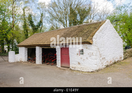 A traditional Irish rural farm building with thatched roof and whitewashed walls in the Ulster American Folk Park, - Stock Photo