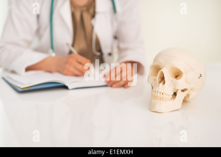Closeup on human skull and medical doctor woman working in background - Stock Photo