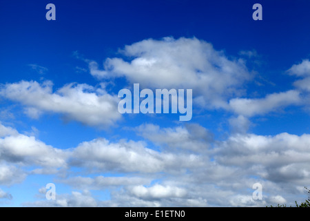 White cumulus clouds, blue sky cloud skies UK - Stock Photo