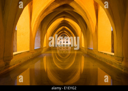 Reflected arches in the Baths of Lady Maria de Padilla (Banos de dona Maria de Padilla) in the Royal Alcazar, Seville, - Stock Photo