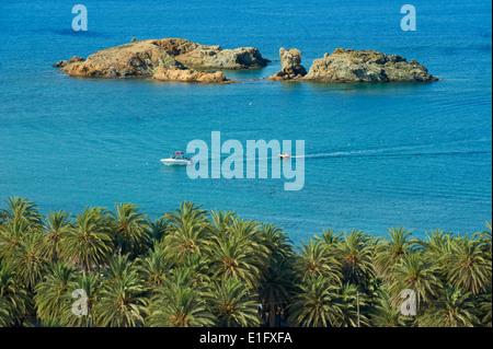 Greece, Crete island, Vai beach and palm trees, eastern Crete - Stock Photo