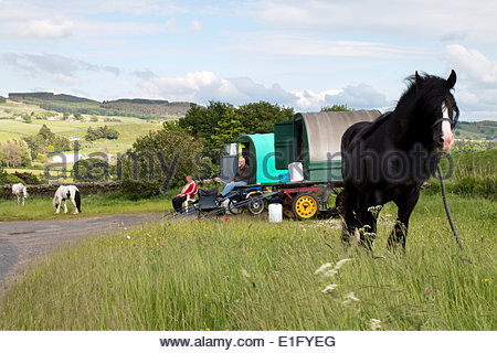 North Pennine Hills near Middleton-in-Teesdale, Co Durham, UK. 3rd June 2014.   Appleby Horse Fair is one of the - Stock Photo