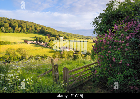 View of Slad Valley, Stroud, Gloucestershire in summer; - Stock Photo