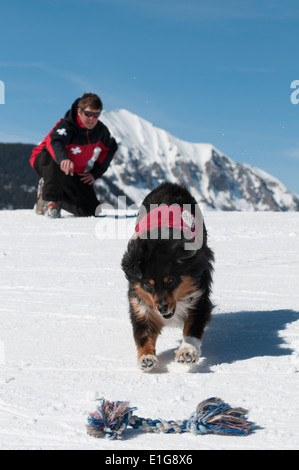 Male ski patroller and his search dog training at the Crested Butte Ski Resort, Crested Butte, Colorado. - Stock Photo