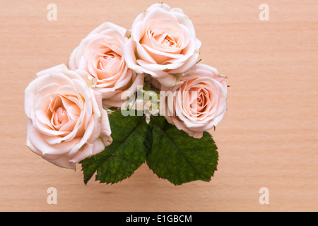 pink roses in a vase on a wooden desk - Stock Photo