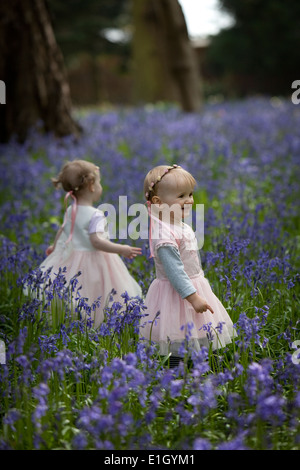 Two young children in a wood full of bluebells in England in springtime - Stock Photo