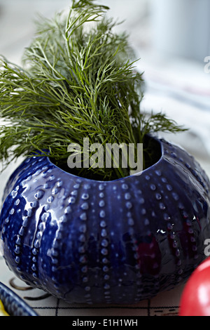Herbs growing in blue plant pot - Stock Photo