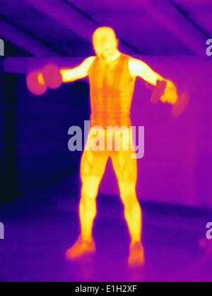 Thermal image of man training with barbells. The image shows the heat produced by the muscles - Stock Photo
