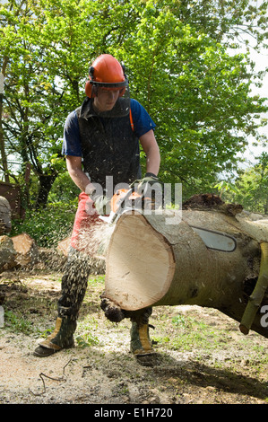 Young male tree surgeon using chainsaw on tree trunk - Stock Photo