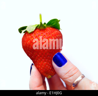 Strawberry held by hand with nails painted blue - Stock Photo