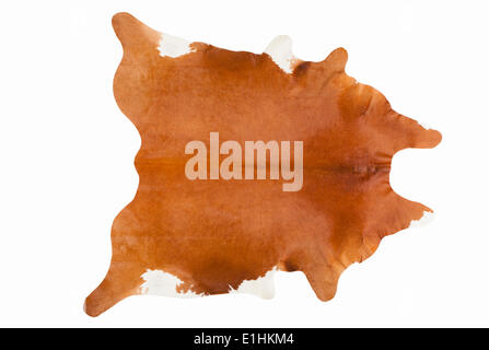 Furry Russet Pelage as a Rug - Stock Photo
