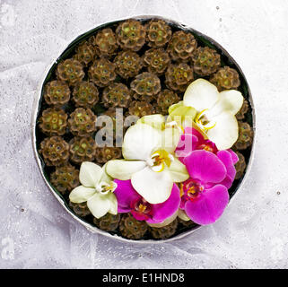 Floristics. Floral pattern. Design of Bridal Bouquet of Flowers. Vernal Plate - Stock Photo