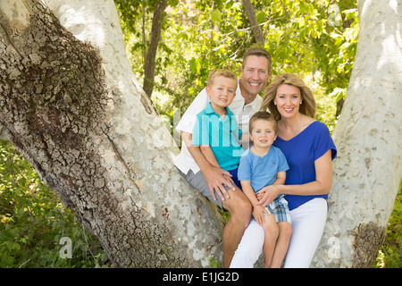 Family of four on branch of tree - Stock Photo