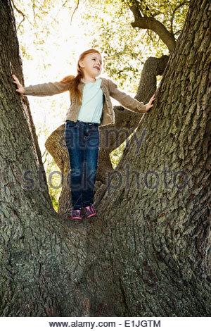 Portrait of girl gazing from tree - Stock Photo