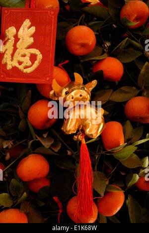 Chinese New Year Decoration Tangerine Luck Symbols Stock Photo