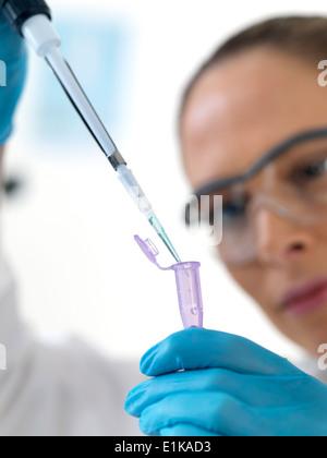 Female scientist using pipette to drop liquid into an eppendorf tube. - Stock Photo