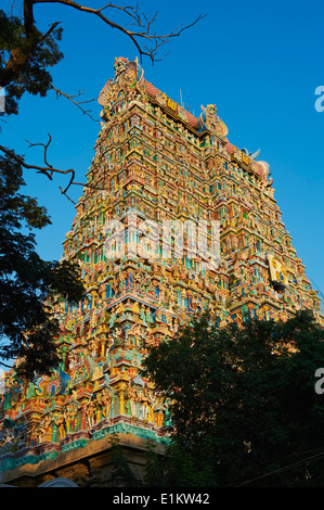 India, Tamil Nadu, Madurai, Sri Meenakshi temple - Stock Photo