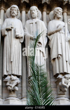 Notre Dame Cathedral. Palm on Palm sunday - Stock Photo