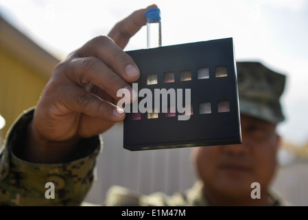 U.S. Navy Chief Hospital Corpsman Emeterio Donato, the chief of the preventive medicine team for Camp Lemonnier?s - Stock Photo