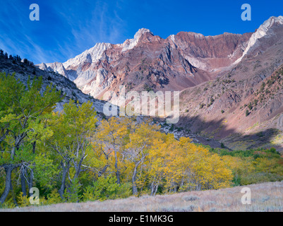 McGee Creek canyon with fall colored aspens. Inyo National forest. California - Stock Photo
