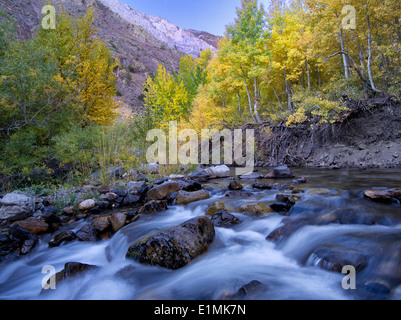 Mcgee Creek and fall colored aspens, Inyo National Forest, Eastern Sierra Nevada mountains, California - Stock Photo