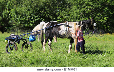 Appleby-in-Westmorland, Cumbria, UK. 6th June 2014. A girl with a horse and trap at the annual event of Appleby - Stock Photo