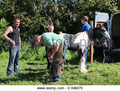 Appleby-in-Westmorland, Cumbria, UK. 6th June 2014. A farrier working at the annual event of Appleby Horse Fair, - Stock Photo